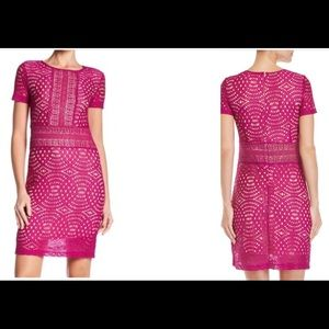 ABS Lace Dress/ NWT/Size 10